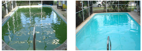 FloridaPoolServices-07